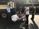 Bắc Giang: Ngăn chặn kịp thời gần 1,6 tấn lợn mắc bệnh dịch tả châu Phi