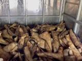 Sơn La: Thu giữ, tiêu hủy hơn 1 tấn nội tạng và sản phẩm từ động vật bốc mùi