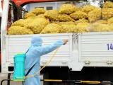 Bộ GTVT sẽ hỗ trợ tối đa vận chuyển hàng hóa và tiêu thụ nông sản