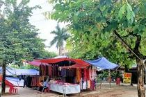 Thái Nguyên: Người dân bức xúc vì doanh nghiệp thuê đất nhiều năm nhưng không sử dụng