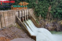 Thu hồi giấy phép hoạt động phát điện Nhà máy thủy điện Thượng Nhật