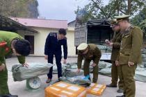 Lạng Sơn: Bắt giữ gần 2 tấn nầm lợn hỏng đang trên đường tiêu thụ