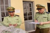 Lạng Sơn: Thu giữ gần 370 kg thuốc bắc nhập lậu