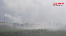 Ninh Sở, Thường Tín (Hà Nội): Người dân bức xúc vì ô nhiễm từ khí thải