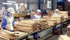 Xuất khẩu gỗ khôi phục đà tăng trưởng