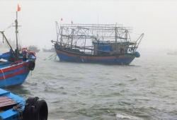 Quảng Trị nghiêm cấm tất cả tàu thuyền ra khơi từ chiều 23/9