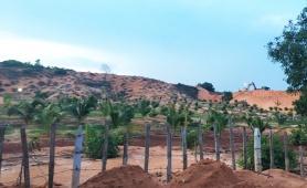 Bình Thuận: Đất công rơi vào tay tư nhân như thế nào?