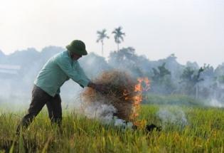 Hà Nội: Chấm dứt tình trạng đốt rơm rạ gây ô nhiễm môi trường