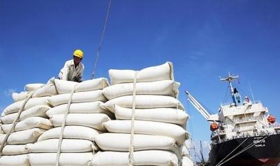 Lô gạo Việt đầu tiên nhập khẩu vào Anh theo Hiệp định UKVFTA