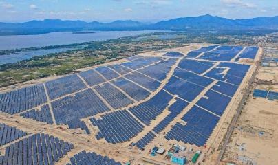 Chủ đầu tư Nhà máy điện mặt trời Phù Mỹ, Bình Định cam kết khắc phục hậu quả