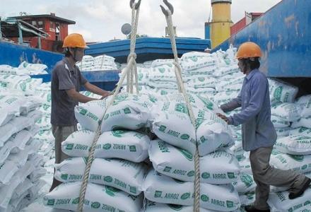 Bất chấp dịch bệnh, xuất khẩu gạo vẫn ghi nhận nhiều tín hiệu lạc quan