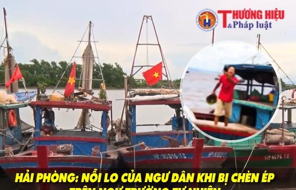 Hải Phòng: Nỗi lo của ngư dân khi bị chèn ép trên ngư trường tự nhiên