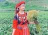 Huỳnh Vy hóa thiếu nữ Tây Bắc, hào hứng khám phá Mộc Châu